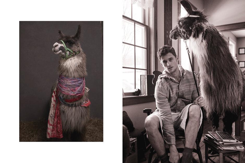 llamas-pajamas-07